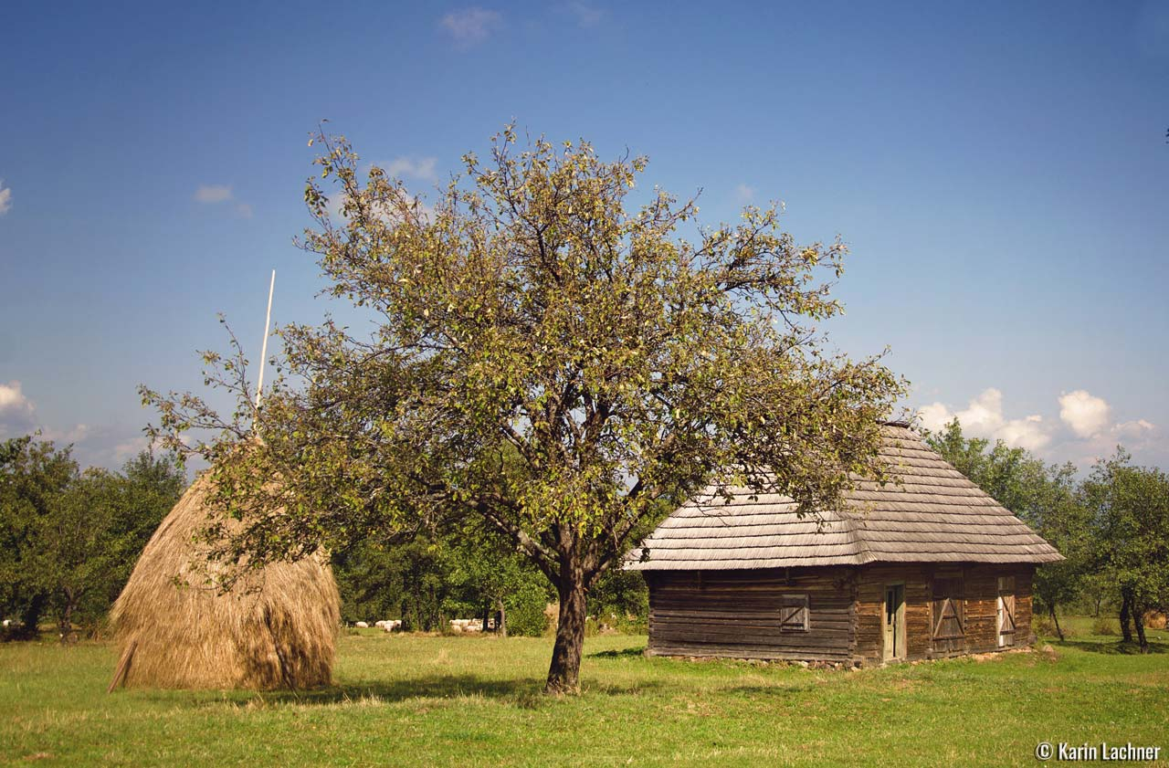 Rural-Karin-Lachner