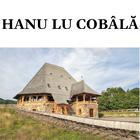 hanu-lu-cobala-140