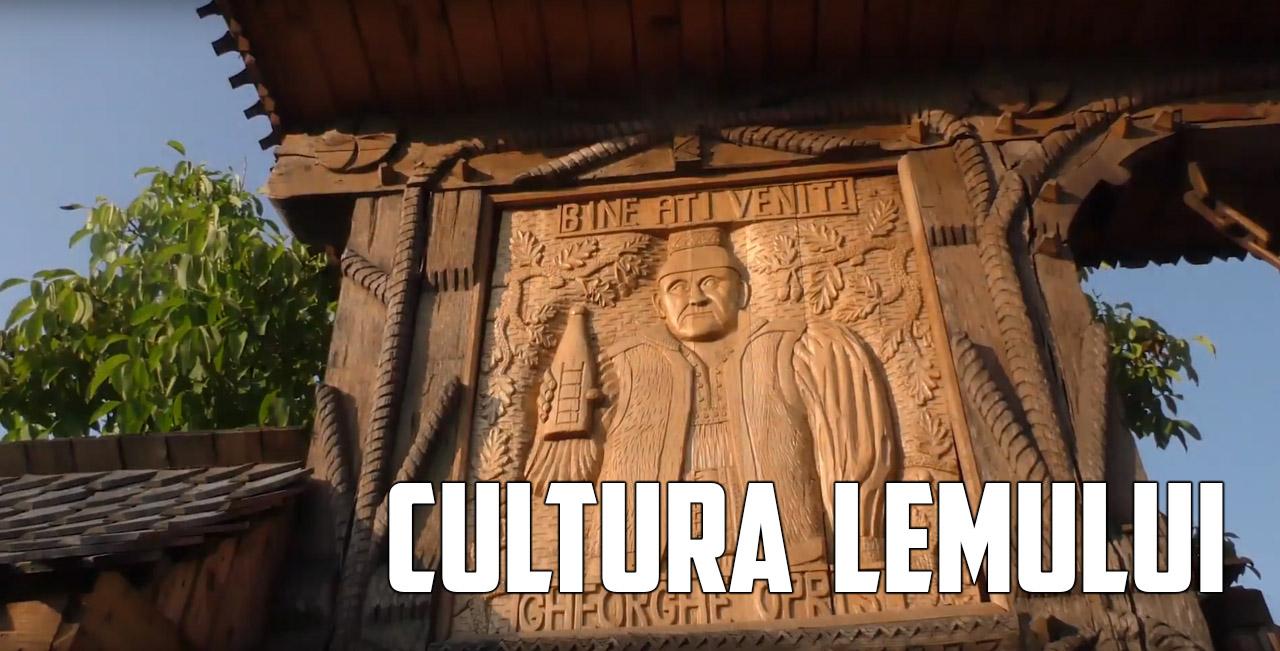 cultura-lemnului