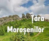tara-morosenilor
